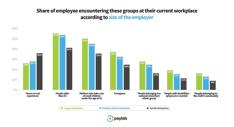 Paylab Diversity study 2019 big corporation small business