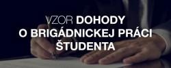 Vzor dohody o brigádnickej práci študenta - Kariéra v kocke - Profesia.sk